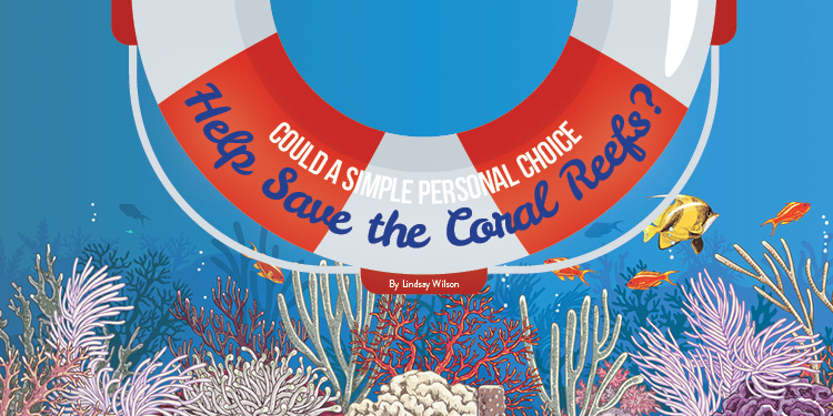 health_hotline_article_could_simple_personal_help_save_reefs