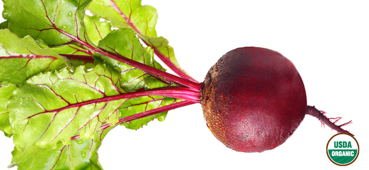 health_hotline_article_for_the_love_of_organics_beets