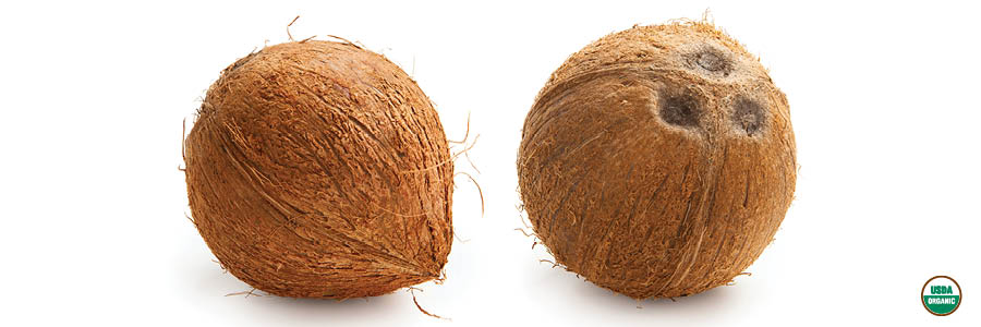 for_the_love_of_organics_coconuts