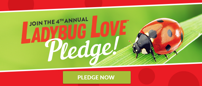 Take the ladybug love pledge