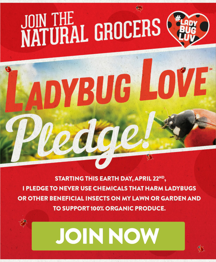Join the Ladybug Love Pledge Today!